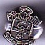 Tiny chrome shield