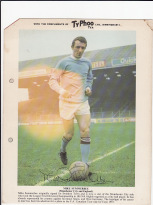 Typhoo card Mike Summerbee